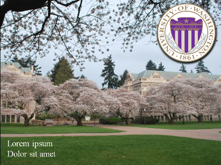 UW 1 University of Washington 